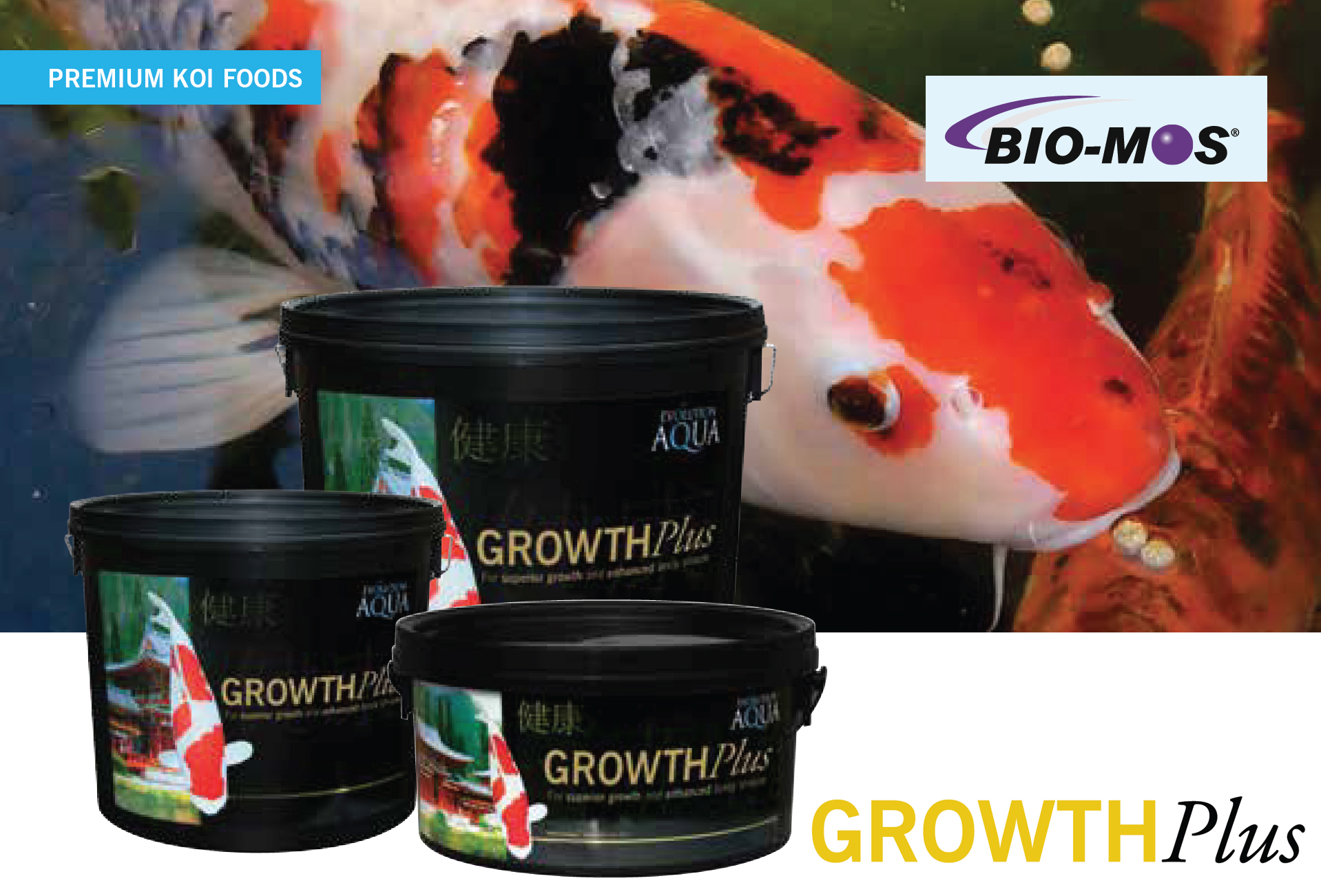 Evolution Aqua Growth Plus koi food, koi krmivo Grow Plus Evolution Aqua