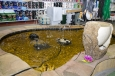 Showroom FISH&POND ShowStone Park - Doubecká 130, 251 62 Mukařov-Žernovka.