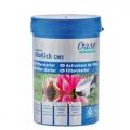 AquaActiv BioKick 200 ml (Biokick CWS) na 10.000 litrů, pro nastartování jezírek a filtrací, speciálně pro okrasná, koupací jezírka, biotopy a speciálně do filtrací
