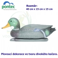 Mallard duck drake - Plovoucí divoký kačer 40 x 15 x 15 cm