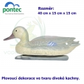 Mallard duck female - Plovoucí divoká kachna 40 x 15 x 15 cm
