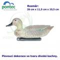 Teal female - Plovoucí kachna 26 x 11,5 x 10,5 cm