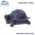 Wate Spout Turtle - Vodní chrlič želva