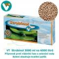 VT Strobinol 3000 ml na 6000 litrů, přípravek proti vláknité řase a zelenání vody