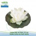 Lotos bílý na listu 15 cm - Velda Lotus on leaf white
