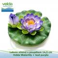 Leknín vínový s poupětem 14,5 cm - Velda Waterlily + bud purple