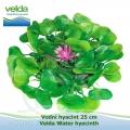 Vodní hyacint 25 cm - Velda Water hyacinth