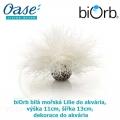 biOrb bílá mořská Lilie do akvária, výška 11cm, šířka 13cm dekorace do akvária
