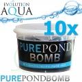 Pure Pond BOMB 10x, čistící a startovací bakterie pro bio-rovnováhu v jezírku, použitelné po celý rok, aplikace od 4 °C vody v jezírku 10 ks pro 100-800 m3
