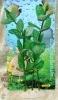Rostlina se zelenými vejčitými listy - 25 cm