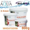 EA Wheatgerm, celoroční krmivo pro malé a menší rybky, velikost 3-4 mm, balení 800g