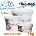 EA Wheatgerm, celoroční krmivo pro malé a menší rybky, velikost 3-4 mm, balení 2000g