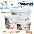 EA Wheatgerm, celoroční krmivo pro malé a menší rybky, velikost 3-4 mm, balení 6 kg