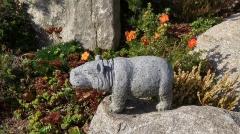 Kamenné zvíře - Hroch