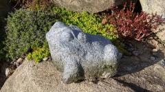 Kamenné zvíře - Žába