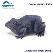 Water Spout Frog - Vodní chrlič žába