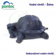 Water Spout Turtle - Vodní chrlič želva