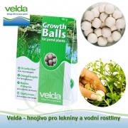 Hnojivo pro lekníny a vodní rostliny - Growth balls