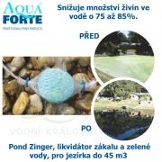 Pond Zinger, likvidátor zákalu a zelené vody, pro jezírka a biotopy bez filtrací do 45 m3, fosfátový flukolant
