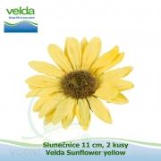 Slunečnice 11 cm, 2 kusy - Velda Sunflower yellow