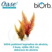 biOrb podzimní kapradina do akvária, 2 kusy, výška 28,5 cm, dekorace do akvária