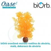 biOrb oranžová mořská rostlina do akvária, malá, dekorace do akvária