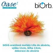 biOrb oranžová mořská Lilie do akvária, výška 11cm, šířka 13cm dekorace do akvária