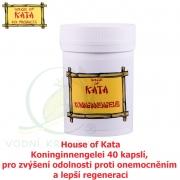 House of Kata Koninginnengelei 40 kapslí, pro zvýšení odolnosti proti onemocněním a lepší regeneraci