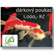 Dárkový poukaz Vodní Království v hodnotě 1000 Kč