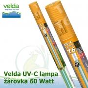Originální T6 žárovka, lampa Velda 60 Watt pro UVC 2-Stream Power 60 Watt