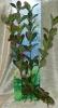 Rostlina s tmavými listy a s fialovým olemováním - 46 cm
