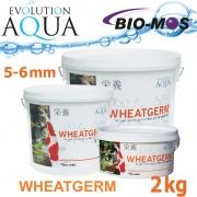 EA Wheatgerm, celoroční krmivo pro střední a velké rybky, velikost 5-6 mm, balení 2000g