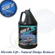 Microbe-lift natural Sludge Reducer 4 l, kaložrout, bakterie odstraňující nečistoty na 100.000 na celý rok speciálně pro koupací okrasná jezírka a biotopy