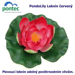 Pontec PondoLily - Leknín  červený