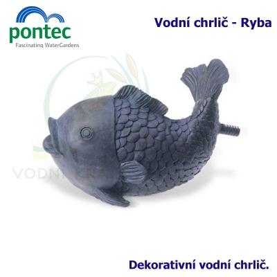 Wate Spout Fish - Vodní chrlič ryba