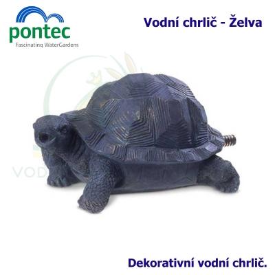 Wate Spout Fish - Vodní chrlič želva