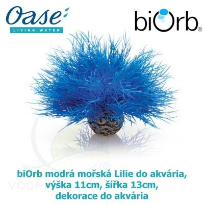 biOrb modrá mořská Lilie do akvária, výška 11cm, šířka 13cm dekorace do akvária