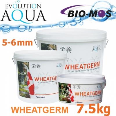EA Wheatgerm, celoroční krmivo pro střední a velké rybky, velikost 5-6 mm, balení 7,5 kg