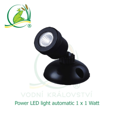 Power LED light 1x1 Watt automatic
