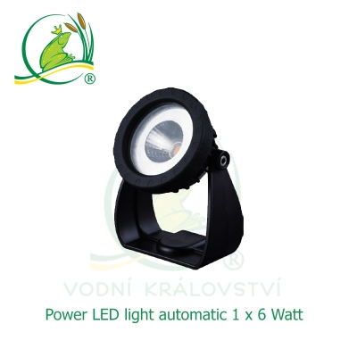 Power LED light 1x6 Watt automatic