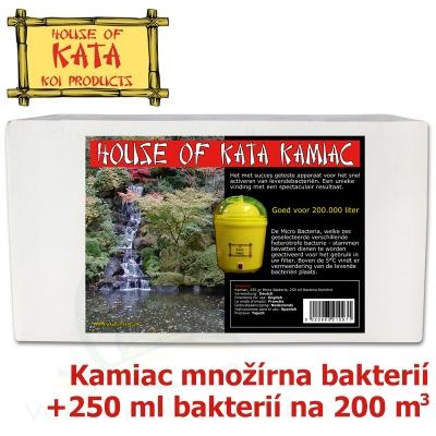 House Of Kata Kamiac
