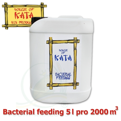 Bacterial feeding