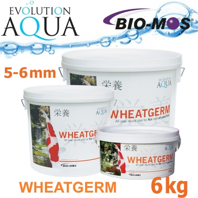 Evolution Aqua Wheatgerm