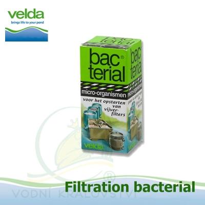 filter start bacterials