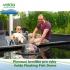 Plovoucí krmítko pro ryby, velké, průměr 70cm, výška 36,5cm- Velda Floating Fish Dome L